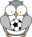 gray-owl-holding-soccer-ball-181400